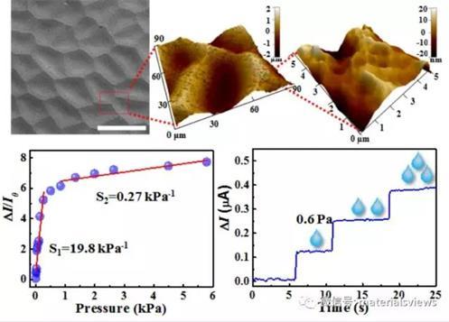 碳纳米管/石墨烯薄膜与仿生叶片结合用于高性能柔性